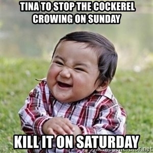 evil toddler kid2 -  Tina to stop the Cockerel crowing on Sunday Kill it on Saturday