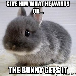 ADHD Bunny - give him what he wants or... the bunny gets it