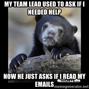 sad bear - my team lead used to ask if i needed help now he just asks if i read my emails