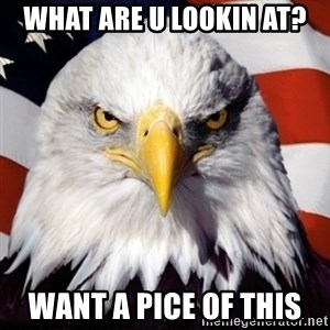 Freedom Eagle  - what are u lookin at? want a pice of this