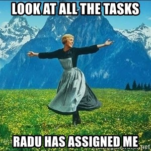Look at all the things - Look at all the tasks radu has assigned me