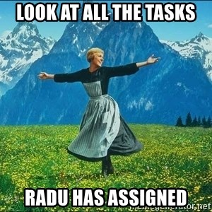 Look at all the things - look at all the tasks radu has assigned