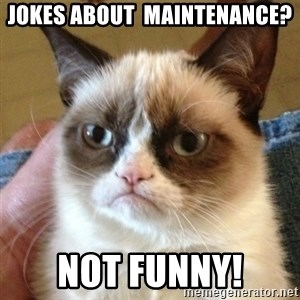 not funny cat - Jokes about  Maintenance? NOT FUNNY!
