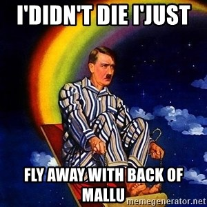 Bed Time Hitler - i'didn't die i'just  fly away with back of mallu