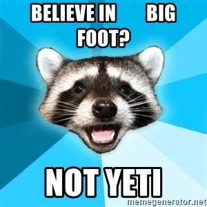 Lame Pun Coon - believe in        big foot? Not yeti