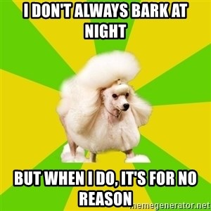 Pretentious Theatre Kid Poodle - I don't always bark at night but when I do, it's for no reason