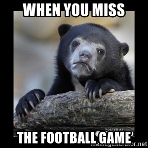 sad bear - When you miss the football game