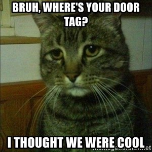 Depressed cat 2 - Bruh, where's your door tag? I thought we were cool