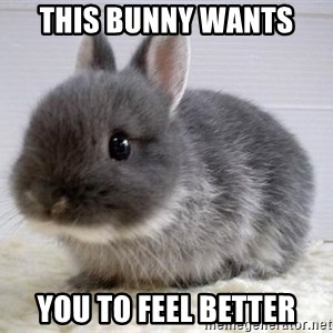 ADHD Bunny - This bunny wants you to feel better