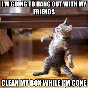 walking cat - i'm going to hang out with my friends clean my box while i'm gone