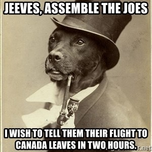rich dog - Jeeves, assemble the Joes I wish to tell them their flight to Canada leaves in two hours.