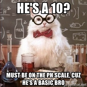 Chemistry Cat - He's a 10? must be on the ph scale, cuz he's a basic bro