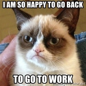 not funny cat - i am so happy to go back to go to work
