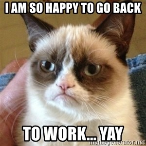 not funny cat - i am so happy to go back to work... yay