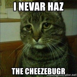 Depressed cat 2 - I nevar haz  the cheezebugr
