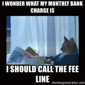 i should buy a boat cat - I WONDER WHAT MY MONTHLY BANK CHARGE IS i SHOULD CALL THE FEE LINE