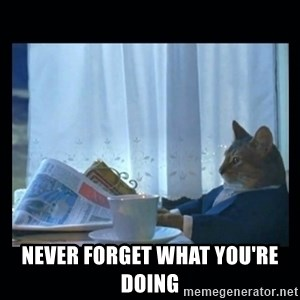 1% cat -  NEVER FORGET WHAT YOU'RE DOING