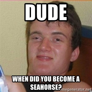 High 10 guy - Dude When did you become a seahorse?