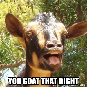 Illogical Goat -  You goat that right