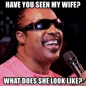 stevie wonder - have you seen my wife? what does she look like?