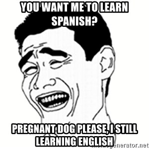 bitch please 8948 - You want me to learn Spanish? Pregnant Dog Please, I still learning English