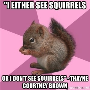 """Shipper Squirrel - """"I either see squirrels or I don't see squirrels"""" - Thayne Courtney Brown"""
