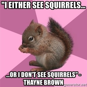 """Shipper Squirrel - """"I either see squirrels... ...or I don't see squirrels"""" -Thayne Brown"""
