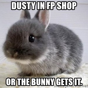 ADHD Bunny - Dusty in fp shop Or the bunny gets it.