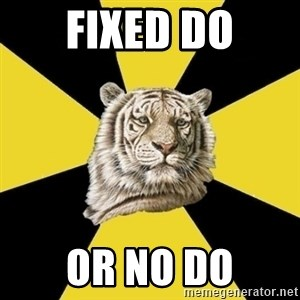 Wise Tiger - fixed do or no do