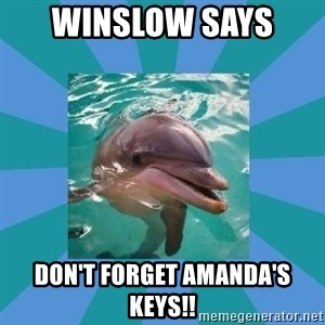 Dyscalculic Dolphin - Winslow Says  Don't forget Amanda's keys!!