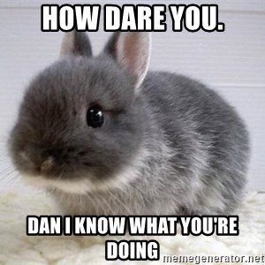 ADHD Bunny - how dare you. Dan I know what you're doing