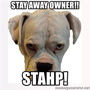 stahp guise - Stay away owner!! STAHP!