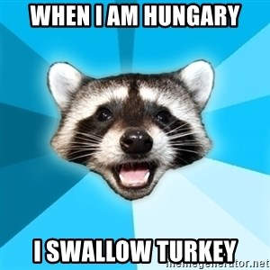 Lame Pun Coon - When I am Hungary I swallow Turkey