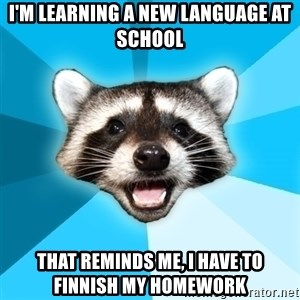 Lame Pun Coon - i'm learning a new language at school that reminds me, i have to finnish my homework