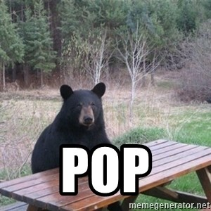 Patient Bear -  pop