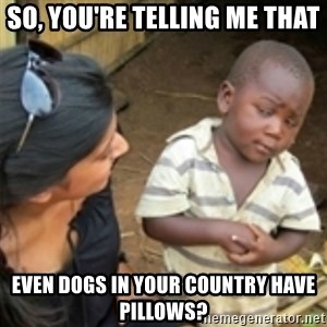 Skeptical african kid  - So, you're telling me that even dogs in your country have pillows?