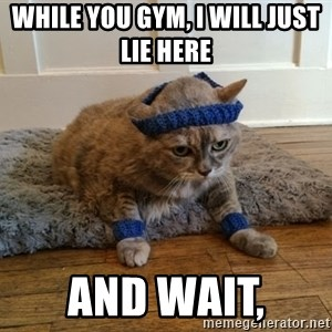 Exercise Cheeseburger - While you gym, I will just lie here   and wait,