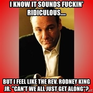 """Tony Soprano - I know it sounds fuckin' ridiculous.... But i feel like the rev. rodney king jr. """"can't we all just get along""""?"""