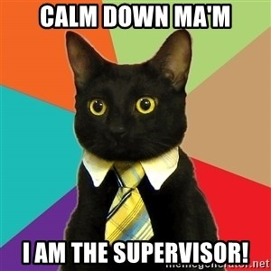 Business Cat - Calm down Ma'm i am the supervisor!