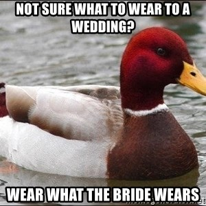 Malicious advice mallard - not sure what to wear to a wedding? wear what the bride wears