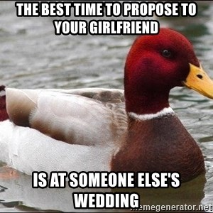 Malicious advice mallard - the best time to propose to your girlfriend is at someone else's wedding