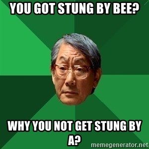 High Expectations Asian Father - you got stung by bee? why you not get stung by A?