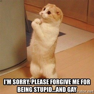 Sorry Cat -  I'm sorry. Please forgive me for being stupid...and gay