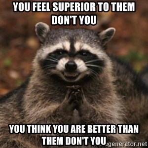 evil raccoon - you feel superior to them don't you you think you are better than them don't you