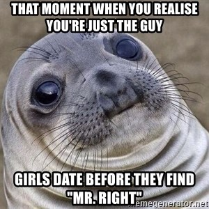 """Awkward Seal - That moment when you realise you're just the guy girls date before they find """"Mr. Right"""""""