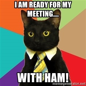 Business Cat - I am ready for my meeting.... WITH HAM!
