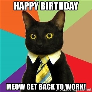 Business Cat - Happy Birthday Meow get back to work!
