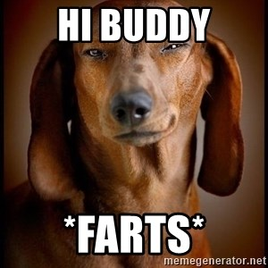 Smughound - hi buddy *farts*
