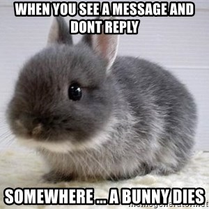 ADHD Bunny - When you see a message and dont reply somewhere ... a bunny dies
