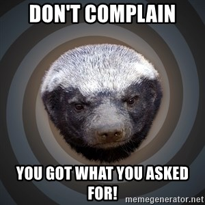 Fearless Honeybadger - Don't complain you got what you asked for!